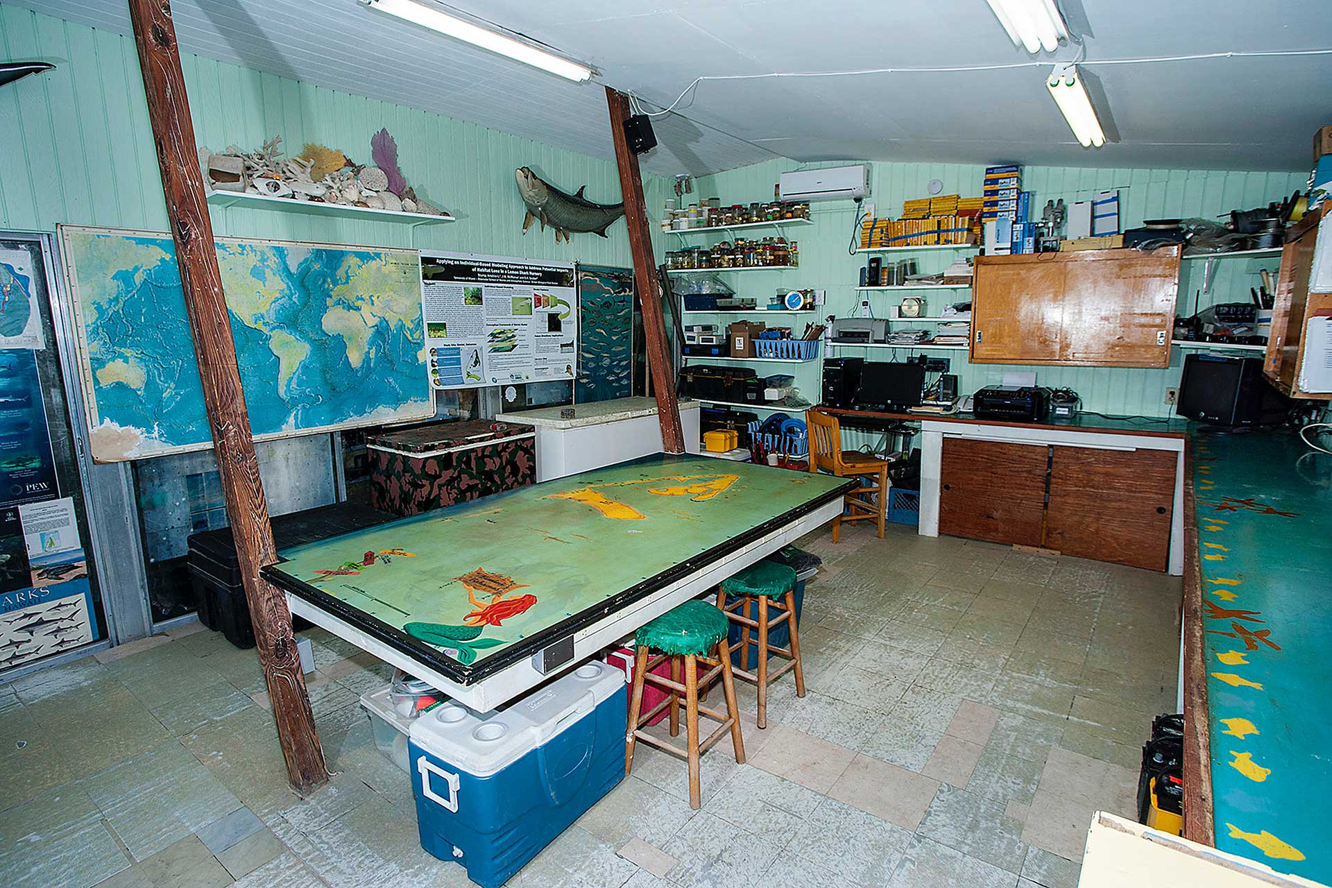 Dry Lab in the existing Bimini Shark Lab. Photo by Matthew Potenski